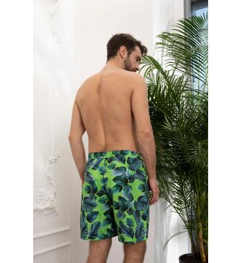 Мужские шорты 18180-2 Зеленый